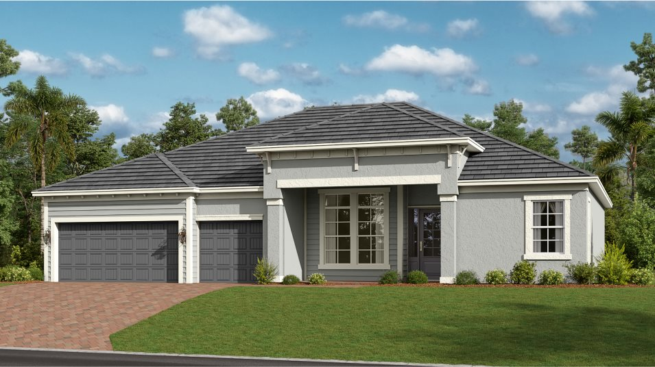Rendering of Coquina